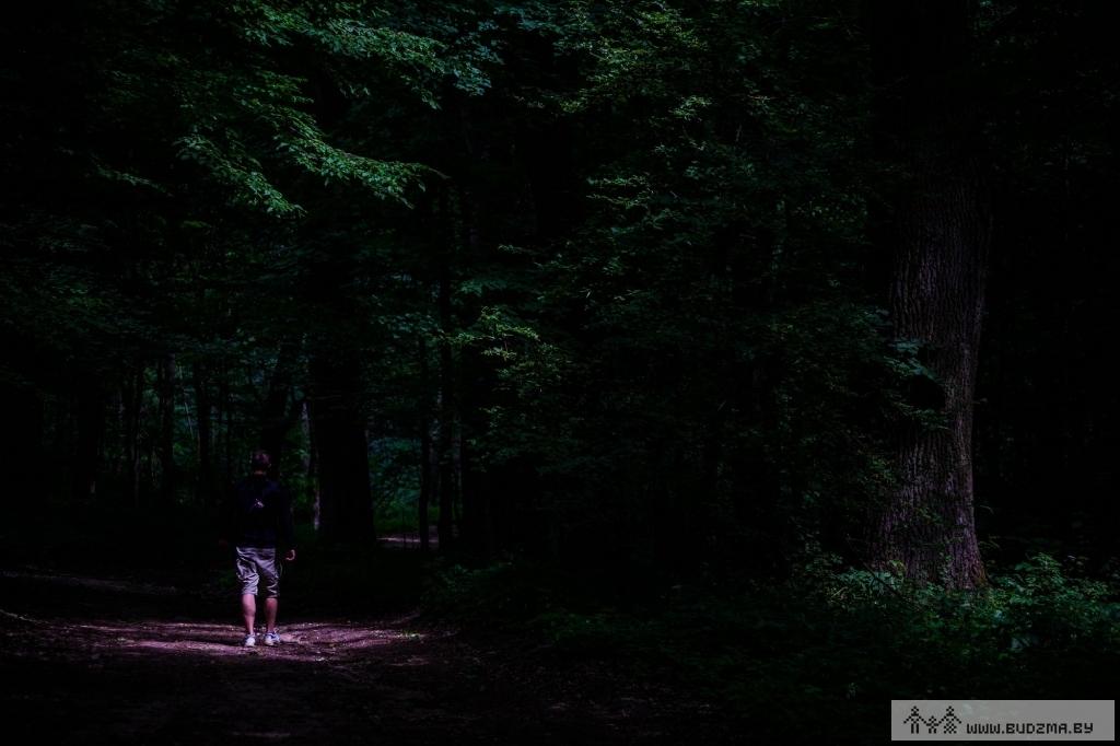 Змрочныя сцежкі Румлёўскага лесу