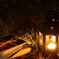 Фонарь-Ночь-Книги_932508363