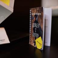 kniha_zybul